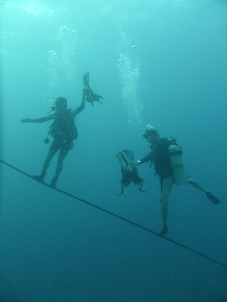 funny divers