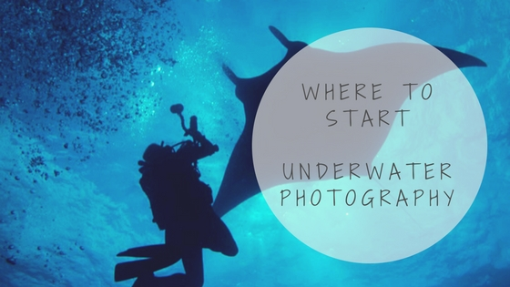 where to start underwater photography