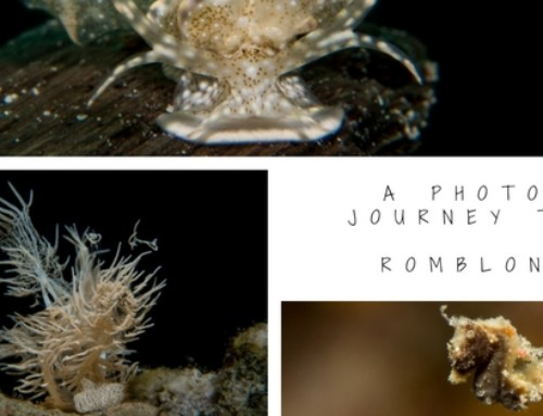 A photo journey to Romblon