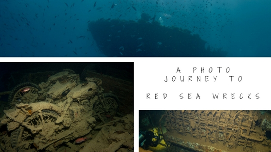 photo journey to wrecks in northern red sea