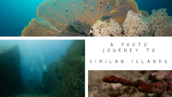 photo journey to similan islands