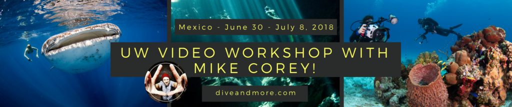 mexico underwater video workshop