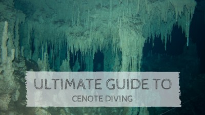 Ultimate Guide to Cenote Diving