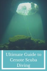 Ultimate Guide to Cenote Scuba Diving