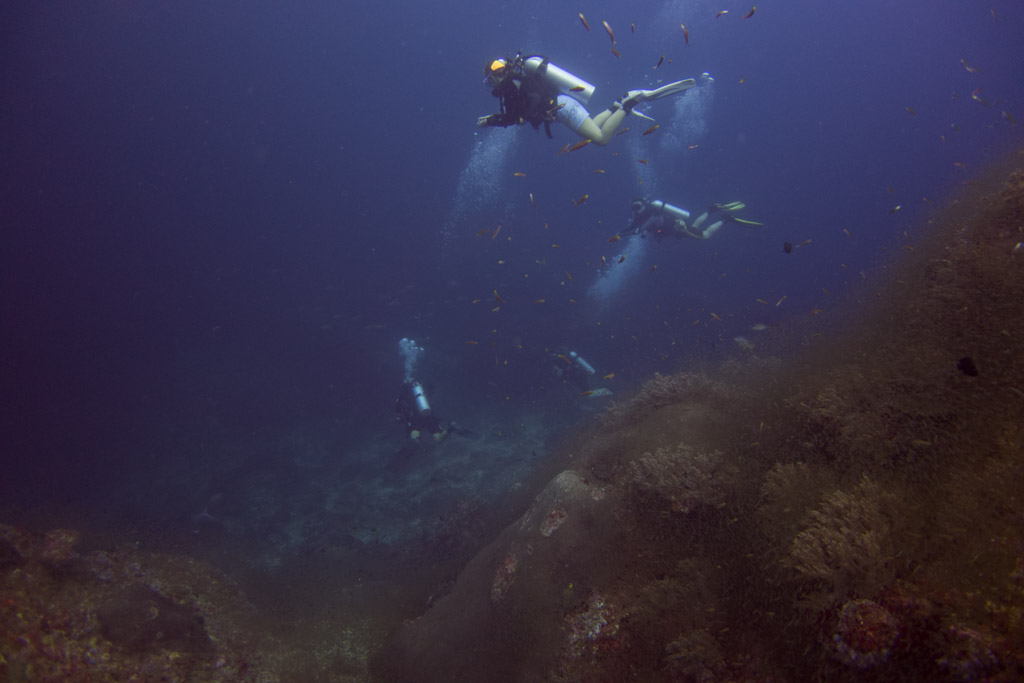 diver in good visibility