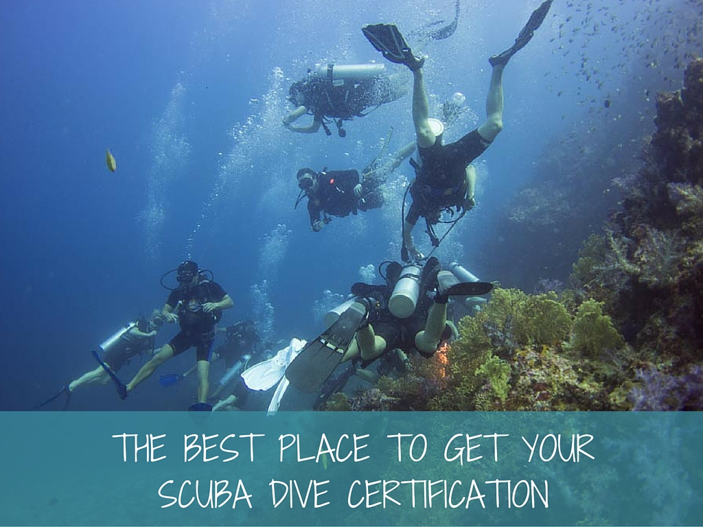 The Best Place To Get Your Scuba Dive Certification More Fun Diving