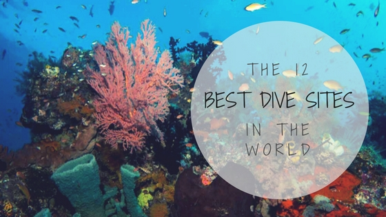 the 12 best dive sites in the world