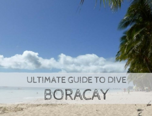 Ultimate Guide to Dive Boracay