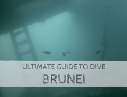 Ultimate Guide to Dive Brunei