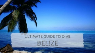 Ultimate Guide to Dive Belize