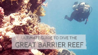 Ultimate Guide to Dive the Great Barrier Reef