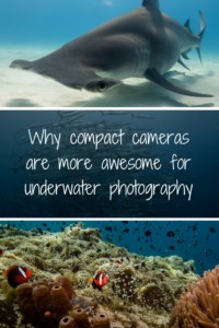 Compact Cameras for Underwater Photography Pinterest