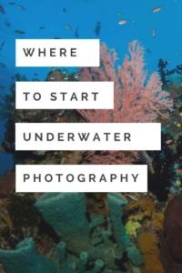 Start Underwater Photography Pinterest