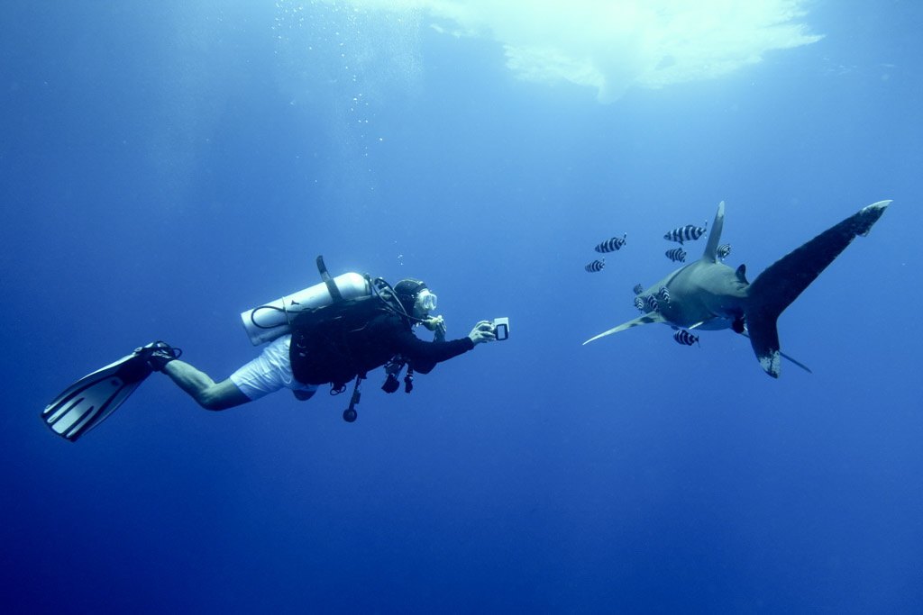 diver with compact camera