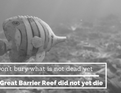 Don't bury what is not dead yet – the Great Barrier Reef did not yet die