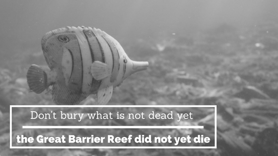 great barrier reef dead