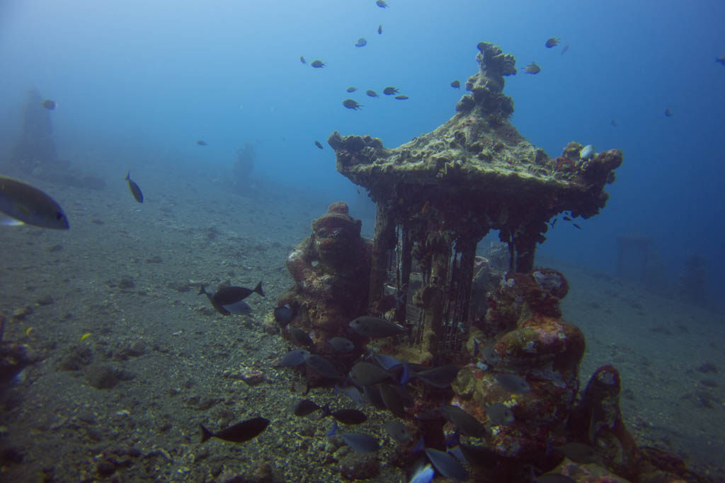 Artificial Coral Reef - Statue