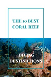 The 10 Best Coral Reef Diving Destinations