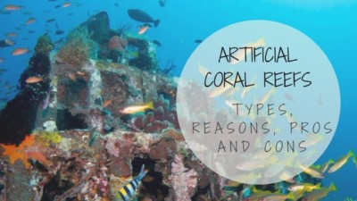 Artificial Coral Reefs