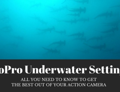 GoPro underwater settings – all you need to know to get the best out of your action camera