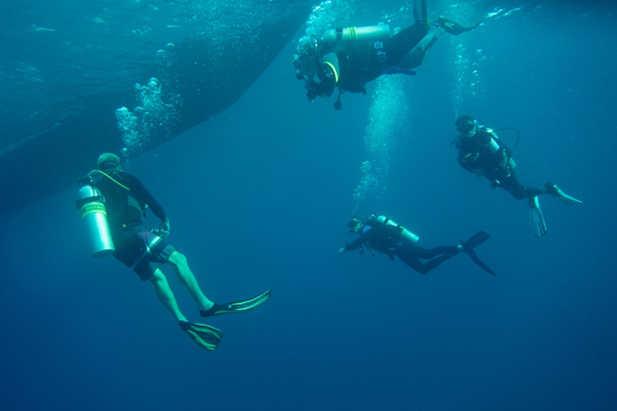 Divemaster Employment Opportunities - More Fun Diving