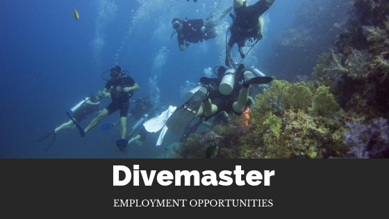 divemaster employment opportunities