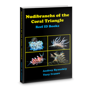 best nudibranch ID book