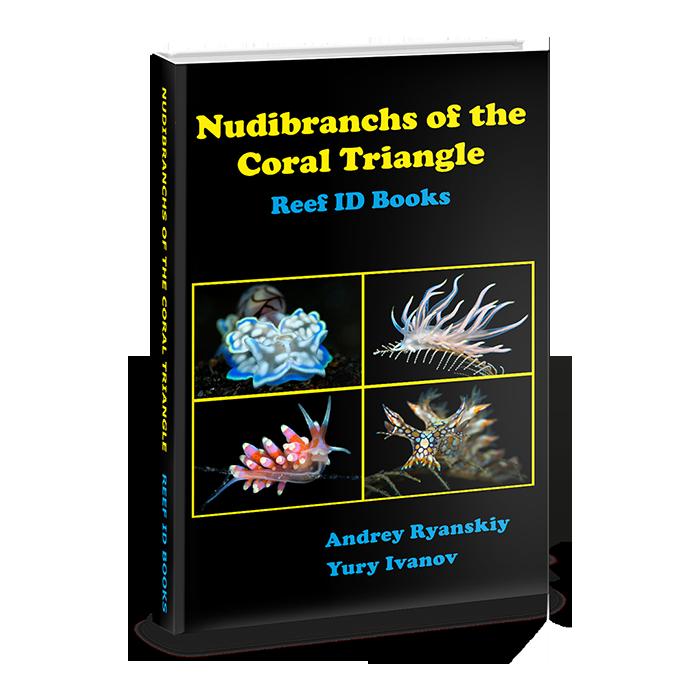 best nudibranch ID book