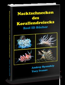 Meeresschnecken Buch