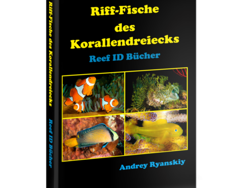 Das beste Fisch-Identifikations-Buch – Fische identifizieren für Taucher, Unterwasserfotografen und Meeresliebhaber