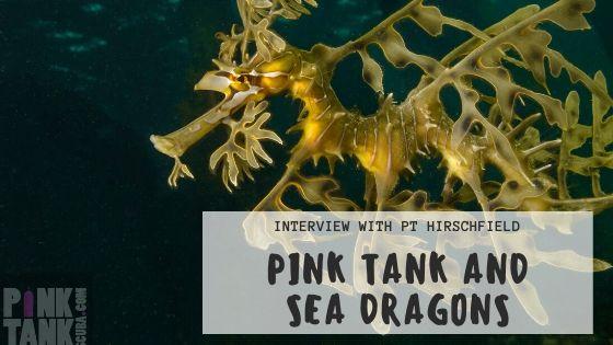 pink tank and sea dragons